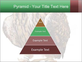 0000078938 PowerPoint Template - Slide 30