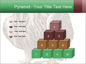 0000078938 PowerPoint Template - Slide 31
