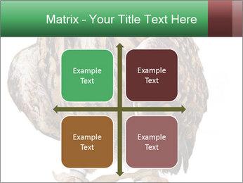 0000078938 PowerPoint Template - Slide 37