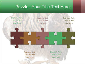 0000078938 PowerPoint Template - Slide 41