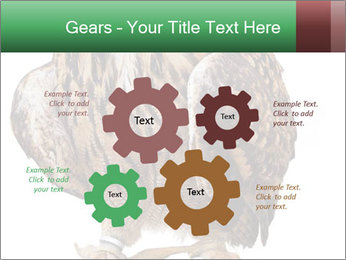 0000078938 PowerPoint Template - Slide 47