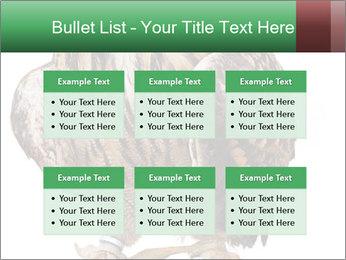 0000078938 PowerPoint Template - Slide 56
