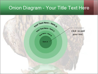 0000078938 PowerPoint Template - Slide 61