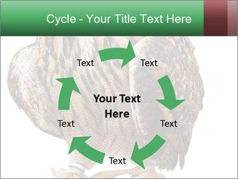 0000078938 PowerPoint Template - Slide 62
