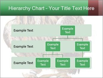 0000078938 PowerPoint Template - Slide 67