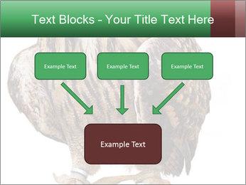 0000078938 PowerPoint Template - Slide 70