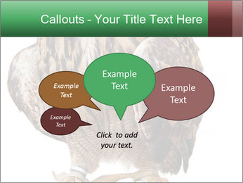 0000078938 PowerPoint Template - Slide 73