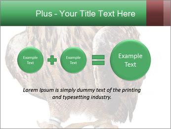 0000078938 PowerPoint Template - Slide 75
