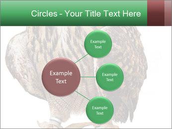 0000078938 PowerPoint Template - Slide 79