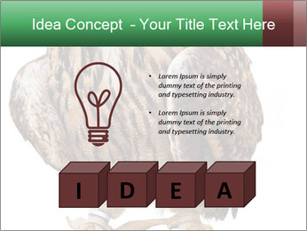 0000078938 PowerPoint Template - Slide 80