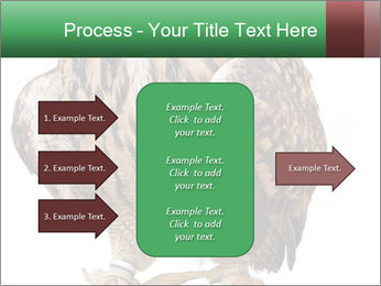 0000078938 PowerPoint Template - Slide 85