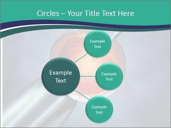 0000078942 PowerPoint Template - Slide 79
