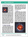 0000078942 Word Templates - Page 3