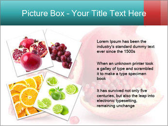 0000078944 PowerPoint Template - Slide 23