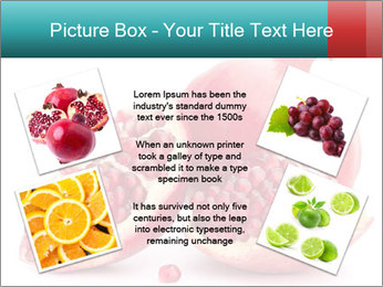 0000078944 PowerPoint Template - Slide 24
