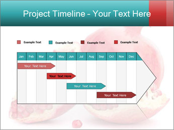 0000078944 PowerPoint Template - Slide 25