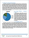 0000078948 Word Template - Page 7