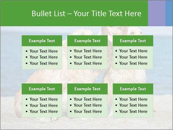 0000078950 PowerPoint Templates - Slide 56