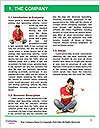 0000078955 Word Template - Page 3