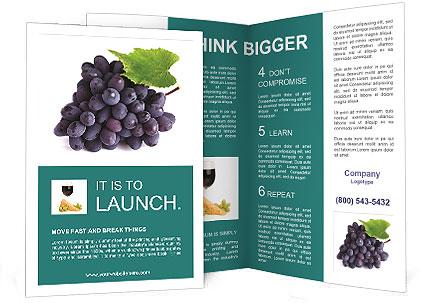0000078960 Brochure Template