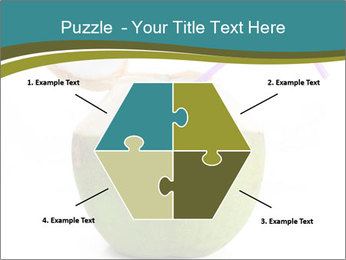 0000078965 PowerPoint Templates - Slide 40