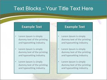0000078965 PowerPoint Templates - Slide 57