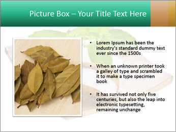 0000078968 PowerPoint Template - Slide 13