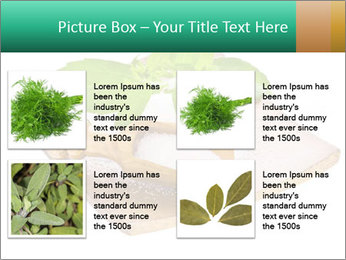 0000078968 PowerPoint Template - Slide 14