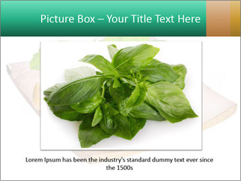 0000078968 PowerPoint Template - Slide 15