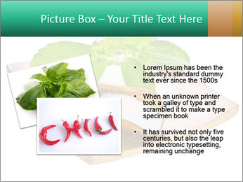 0000078968 PowerPoint Template - Slide 20