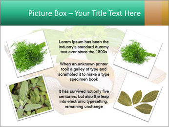 0000078968 PowerPoint Template - Slide 24