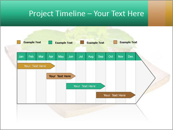 0000078968 PowerPoint Template - Slide 25