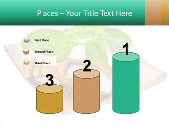 0000078968 PowerPoint Template - Slide 65