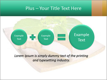 0000078968 PowerPoint Template - Slide 75