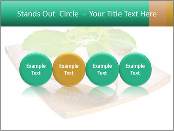 0000078968 PowerPoint Template - Slide 76