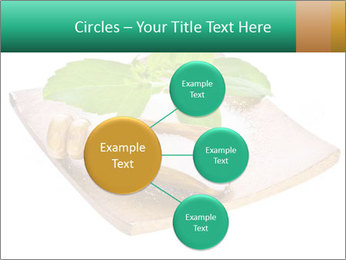 0000078968 PowerPoint Template - Slide 79