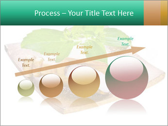 0000078968 PowerPoint Template - Slide 87