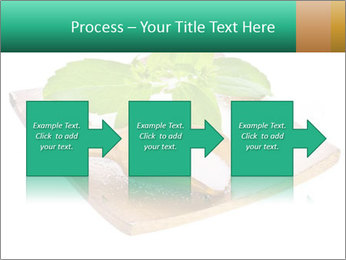0000078968 PowerPoint Template - Slide 88