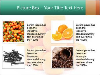 0000078971 PowerPoint Templates - Slide 14