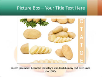 0000078971 PowerPoint Templates - Slide 16