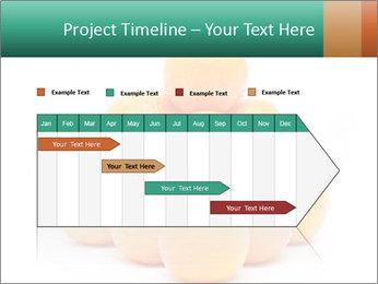 0000078971 PowerPoint Templates - Slide 25