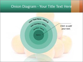 0000078971 PowerPoint Templates - Slide 61