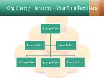 0000078971 PowerPoint Template - Slide 66