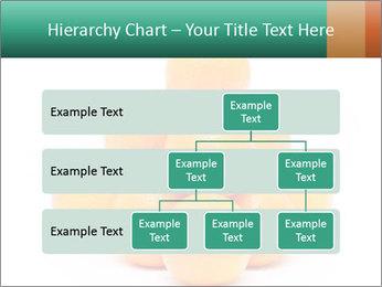 0000078971 PowerPoint Templates - Slide 67