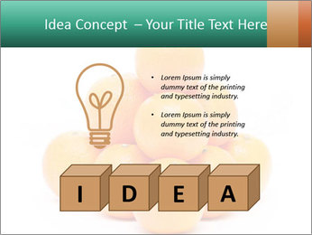 0000078971 PowerPoint Template - Slide 80