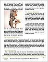 0000078974 Word Template - Page 4