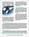 0000078983 Word Template - Page 4