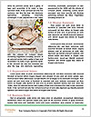 0000078992 Word Templates - Page 4