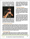0000078994 Word Template - Page 4