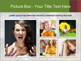 0000078995 PowerPoint Template - Slide 19